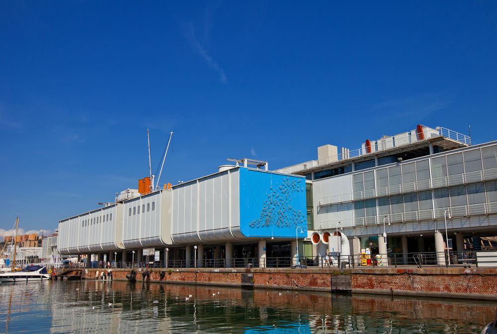 L aquario di genova la tua italia for Ponte delle cabine di rapsodia dei mari 2