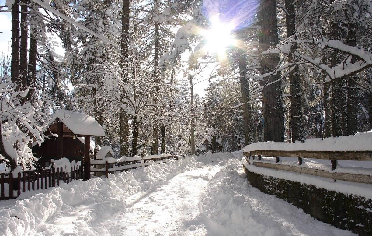10TAVERNA_Sila con la neve_LIB comune